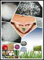 Poliacrilato de potássio sap para frutas de árvores& produtoshortícolas