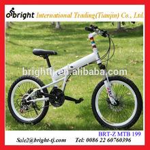 20 mini folding mountain bike made in china
