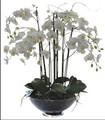 2014 SJ AF038 venta al por mayor orquídea artificial para la decoración de interior de seda de flores de las orquídeas de banquete de boda regalo del festival de la flor