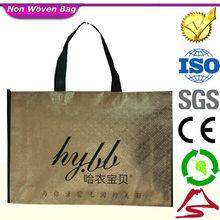 Coated Non Woven Polypropylene Bag, Non Woven Shoe Bag, Non Woven Foldable Bag