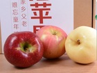 Fresh yantai fuji apple for export