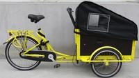 adult tricycle 2 wheel/ 3 wheel cargo bike manufacturer colorful box bike e bikes