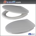 Beewill one piece toilet seat