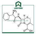 Antibiótico matéria-prima cefalexina monohidratada cas15686-71-2