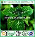Melhor produto de venda antioxidante e anti- depressantnatural cloridrato de ioimbina