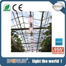 best 600w 400w 300w 120w full spectrum led grow light
