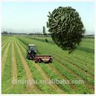 alfalfa hay pellet/alfalfa feed factory/animal feed alfalfa