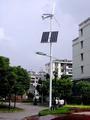 Design bluesun mini-solares painel china fábrica 20w sistema solar barato transporte rápido