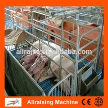 Weaned Pig Corrals Swine Farm Equipment for Piglet Conservation Bed for Piglets Raising