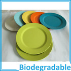 ECO-Freindly Biodegradable Original Plant Fibre Dia. 20cm Green Round Europe Standard Bamboo Food Dinner Plate