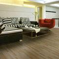 Chinois de haute qualité et multi- objet pavé de carreaux de sol en vinyle coloré pour intérieur