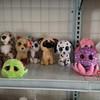 Big eyes peeper TY series soft cute plush toys