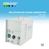 1g معقم الأوزون الأوزون لتنقية الهواء المحمولة آلة