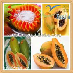 Pawpaw extract/Natural papaya leaf extract/whitening soap ingredients