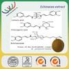free sample supply organic echinacea purpurea extract choric acid made in China
