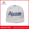 high quality custom embroidery hot sale cotton snapback cap/ oem snapback caps