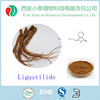 Angelica root extract powder/angelica sinensis extract/angelica extract