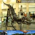 Mi dino- esqueleto de caballo para la ciencia de uso educativo