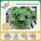 free sample 10%~90% asiaticosides centella asiatica
