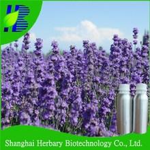 Remove acne Lavender essential oil