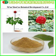 Manufacturer Supply Notoginseng Leaf Triterpenes/ Panax Notoginseng Root Powder For Nutrition Supplement