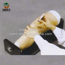 BIX-CK20135 knee joint injection model