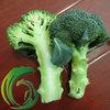 China 2014 New Broccoli Green Cauliflower Fresh Vegetable