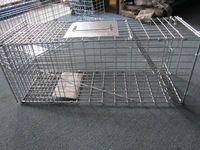 welded wire galvanized rat trap cage good price 18 years factory in Anping