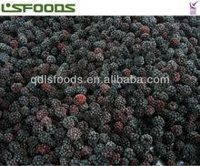 2014 china frozen blackberry best price