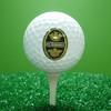 Professional Oem Golf Balls Wholesale
