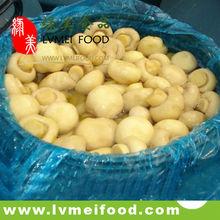 2015 canned whole mushroom champignon in brine