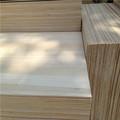 borde paulownia pegados de madera maciza precio de los paneles