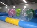 Mais novo barato inflável piscinas atacado