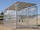 steel dog cage kennel