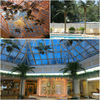 /product-gs/indoor-decorative-palm-trees-metal-artificial-trees-1898689038.html