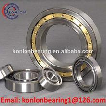 NJ202E double row cylindrical roller bearing Straight Bore bearing High Capacity bearing