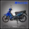110cc 4-stroke Cub motorcycle VEGA110
