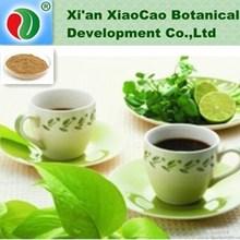 GMP Supply High Quality Natural Tea Saponin,Tea Saponins Powder,Tea Seed Saponin Powder