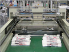 DFHQ-450X2 Full Automatic Paper Bag Making Machine