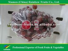 high quality fresh red grape