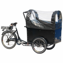 Brushless electric van cargo tricycle /family cargo trike/cargo bike