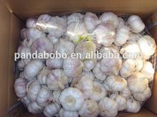 China wholesale fresh white garlic natural garlic fresh garlic price with best price