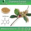 Halal&Kosher Guarana Extract/Guarana Powder/Guarana Extract Powder
