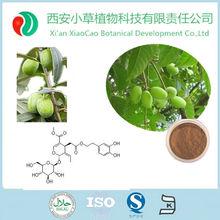 GMP Manufacturer Supply Olive Leaf Extract 20 Oleuropein Powder,Nuzhenide Oleuropein