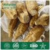 Pueraria/Kudzu Extracts mirifica Plant Estrogens
