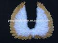 pena do homem branco e asas de anjo