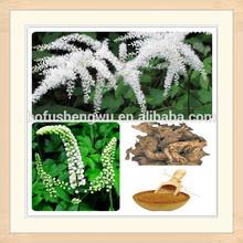 natural black cohosh extract powder/black cohosh roots/pure black cohosh extract