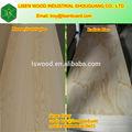 Casa estructurales/muebles de nueva zelanda pino radiata de madera contrachapada
