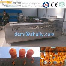 Apricot Pit Removing Machine/Pit Removing Machine Apricot