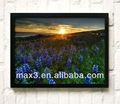 desigh nueva 3d flores de arte de la pared de pintura para la venta